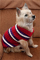 Download Striped Dog Sweater